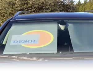 desol1